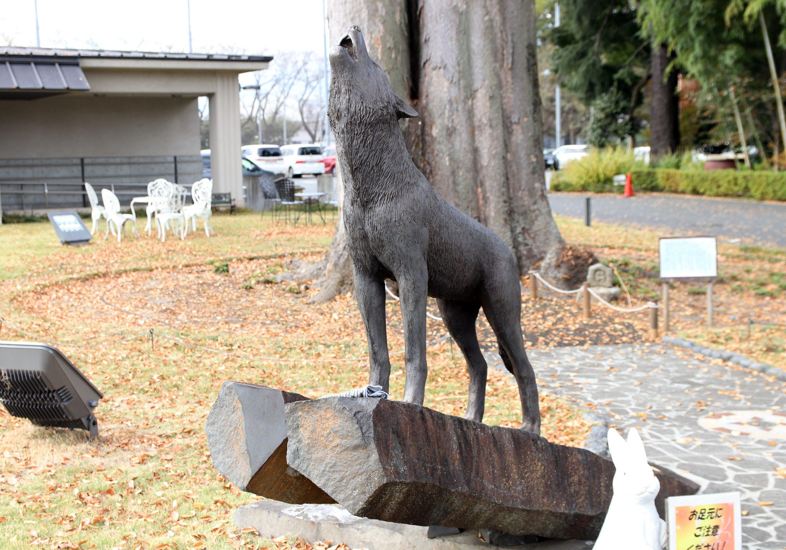 瑞穂町郷土資料館「けやき館」のニホンオオカミ像