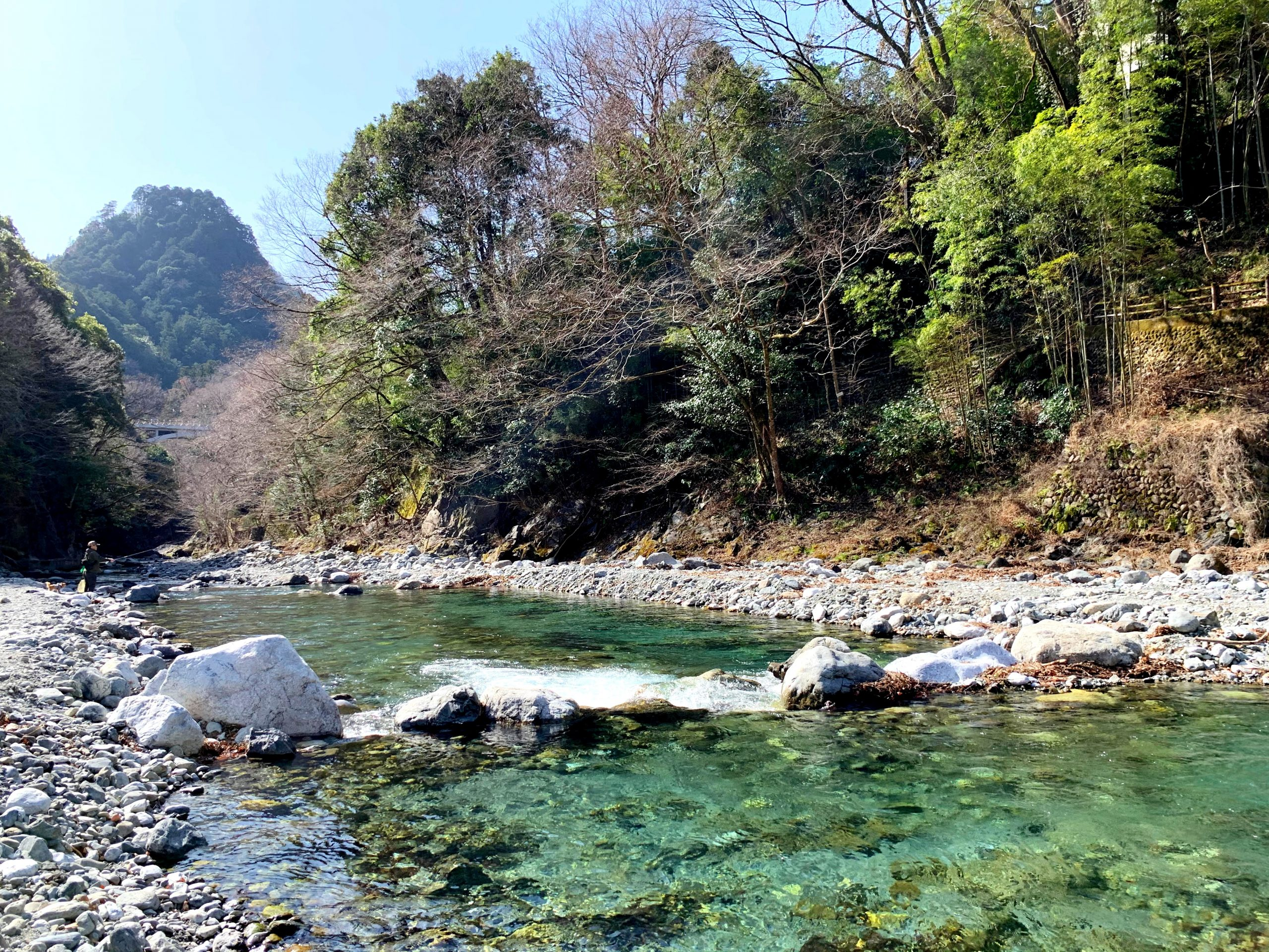 日原川の清流